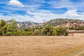 Najam Automobila Muswellbrook, Australija