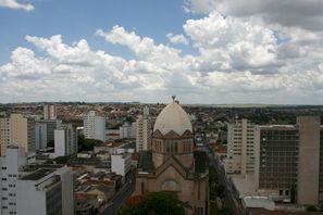 Najam Automobila Araraquara, Brazil