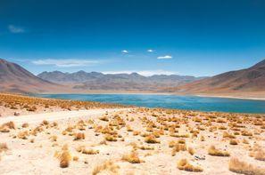 Najam Automobila San Pedro de Atacama, Čile