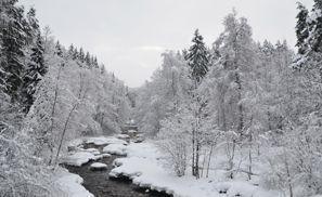 Najam Automobila Nurmijarvi, Finska