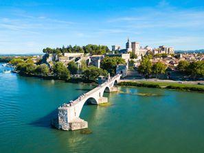 Najam Automobila Avignon, Francuska