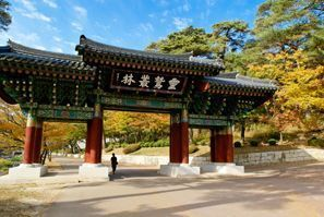 Najam Automobila Gyeongsang-do, Južna Koreja