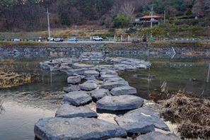 Najam Automobila Jeol-la, Južna Koreja