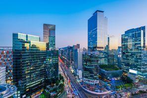 Najam Automobila Seul, Južna Koreja