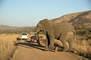 Najam Automobila Klerksdorp, Južnoafrička Republika