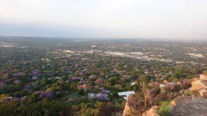 Najam Automobila Rosebank, Južnoafrička Republika