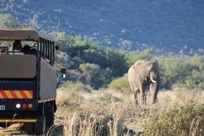Najam Automobila Vryburg, Južnoafrička Republika